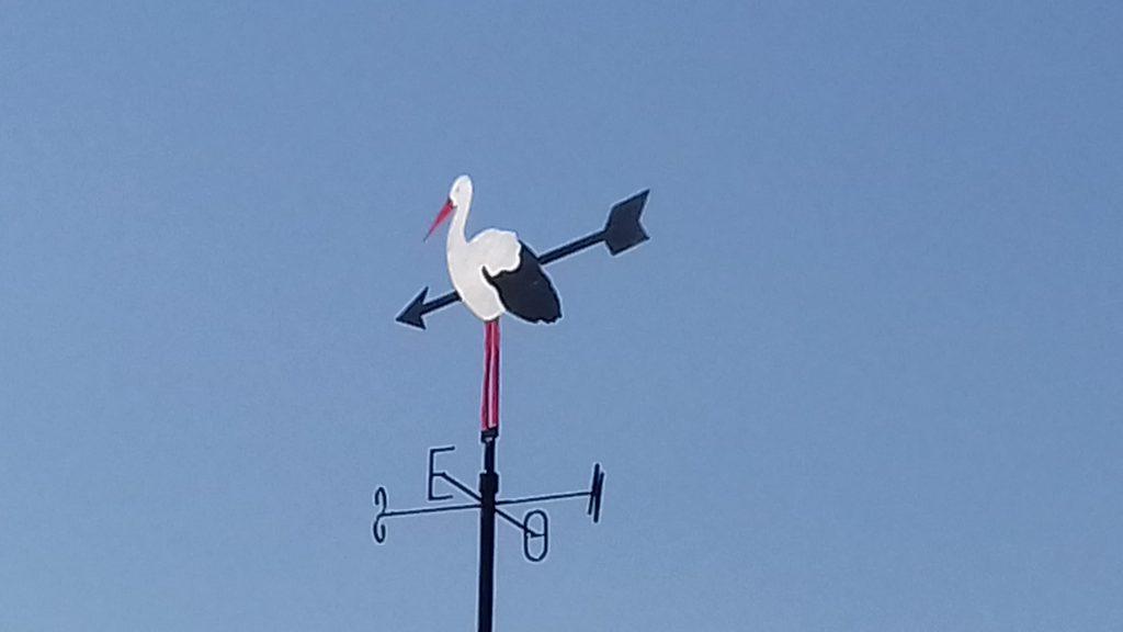 casa rural viña del duco birding ornitología badajoz
