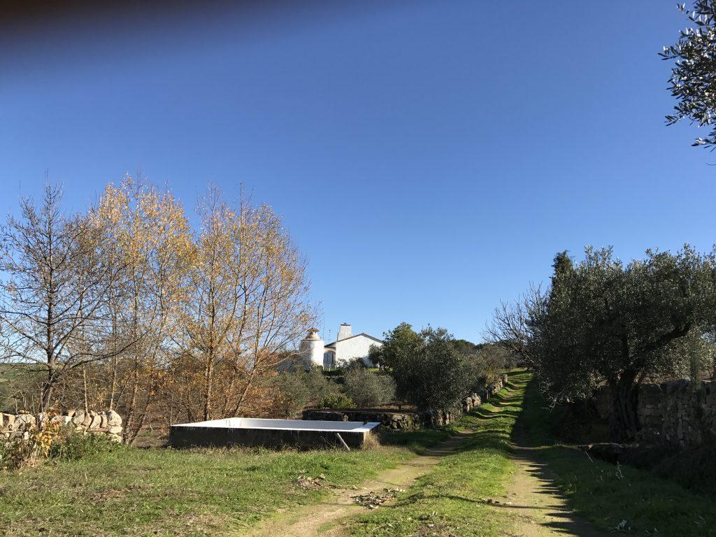 camino entrada y alberca casa rural azuaga