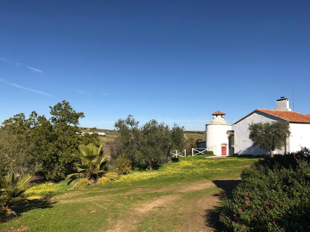 casa rural cortijo viña del duco azuaga